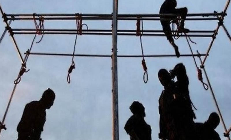 176 executions in 2019