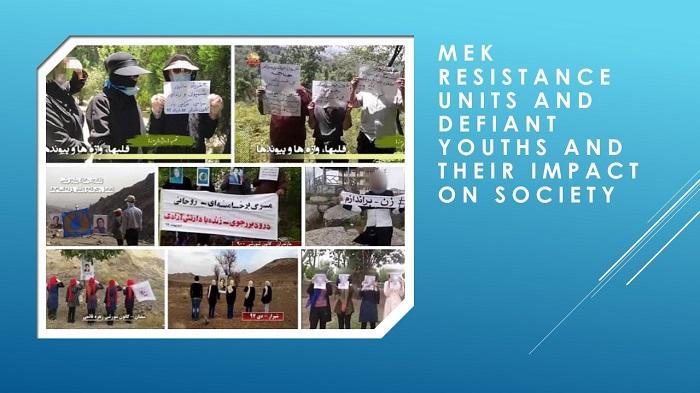 MEK Resistance Units